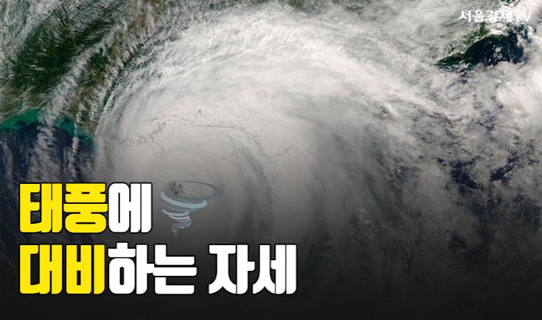 [카드 PICK] 태풍에 대비하는 우리들의 자세